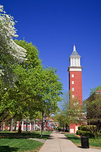 The Evans Clock Tower at Queens UniversityWhite dogwoods are in bloom