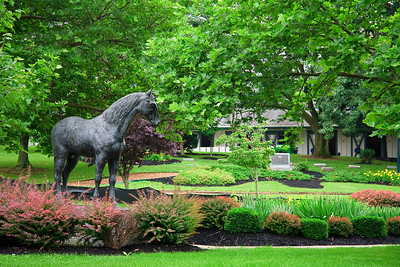 Horse statue at the Kentucky Horse Park
