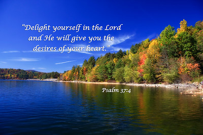 Thorpe Lake in AutumnDelight yourself in the Lord and He will give you the desires of your heart.   Psalm 37:4