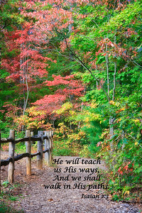 Scripture Pictures Autumn Path